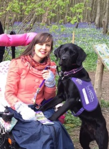 A picture of a woman in a wheelchair (Sally) with her assistance dog, Ethan.