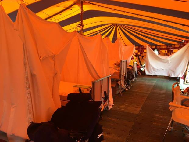 WOMAD accessible bedroom